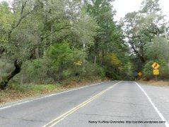 CA-128 W summit into sonoma county