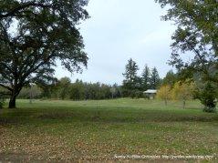 franz valley meadow