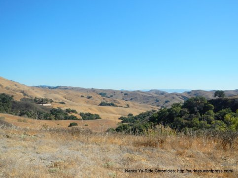 CA-46 E landscape