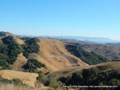CA-46 E landscape views