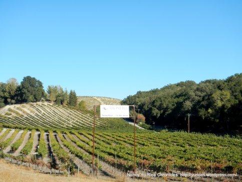 west 46 vineyards