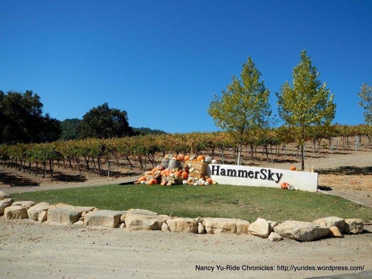 hammersky