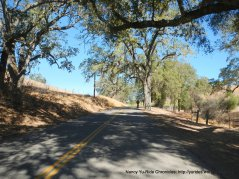 vineyard dr-rolling climbs