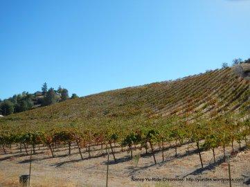 naciemento lake dr vineyards