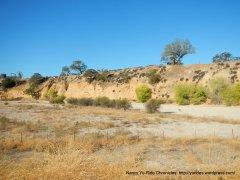 dry creek bank