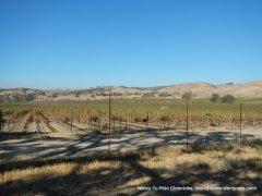 cass winery vineyards