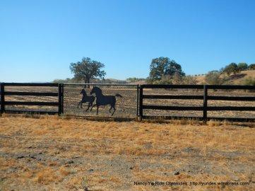 creston hills ranch