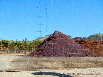linne rd wine trail fermented grapes