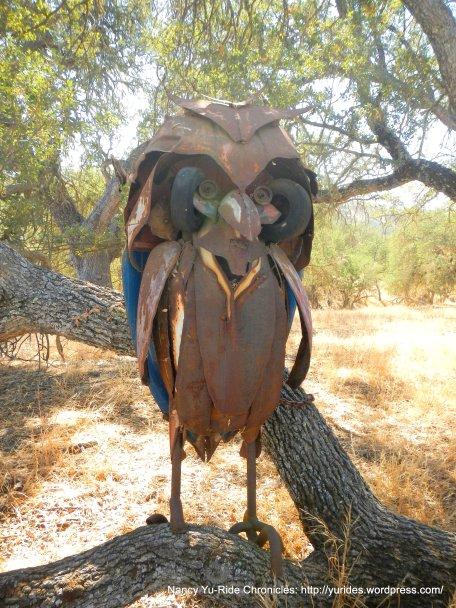 linne rd wine trail owl