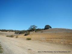 golden hill rd