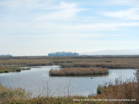 mothball fleet-goodyear slough