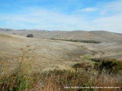 sky valley golden hills