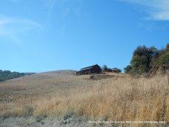 bush hill ranch