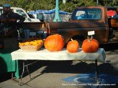 farmers market pumpkins