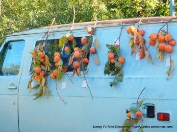 farmers market presimmons