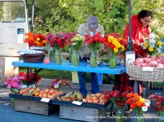farmers market flowers & fruit