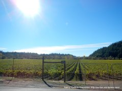 westside russian river valley