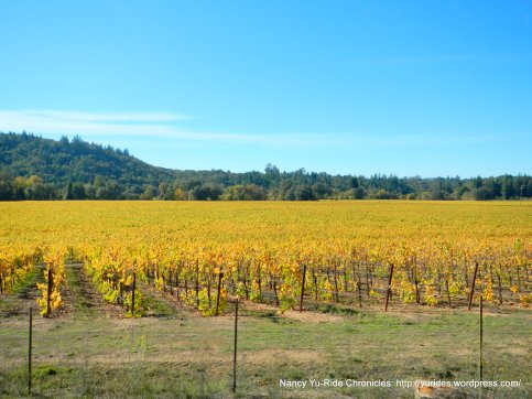 eastside-russian river valley