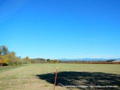 open farmlands
