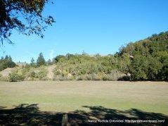 chalk hill pastoral field