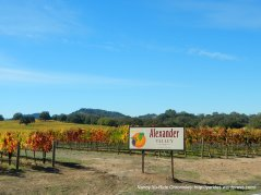 CA-128 W-alexander valley