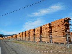asti rd-redwood