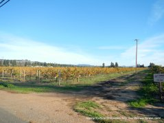 russian river valley