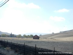 camino tassajara ranch