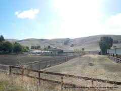 highland rd horse ranch