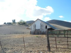 collier canyon open barn