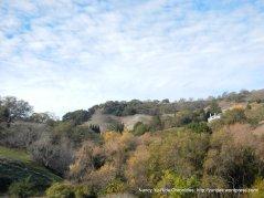 view of briones hills