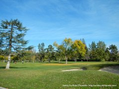 round hill golf course