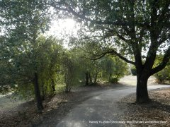 contra costa canal trail