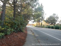 contra costa canal trail-taylor blvd