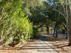 diablo rd mulit-use path