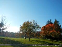 san carlos dr-heather farm park