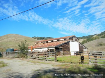 bollinger canyon ranch