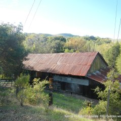 bollinger canyon barn