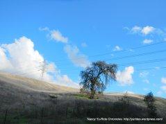 reliez valley landscape