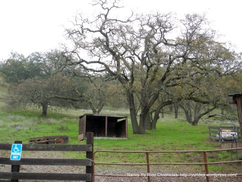 grazing area
