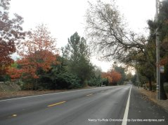 danville blvd-walnut creek