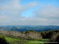 diablo foothill