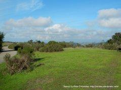 ridge top meadow