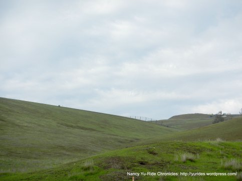 laughlin rd-livermore valley