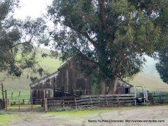brushy peak farm buildings