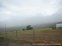 s flynn summit ranch