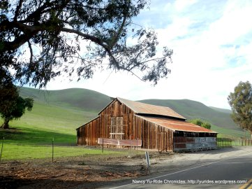 collier canyon barns