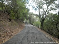 steep climb up briones rd