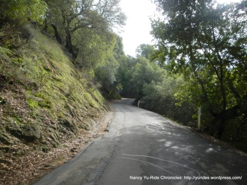 steep climb up briones rd