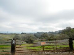 orchard trail-briones park